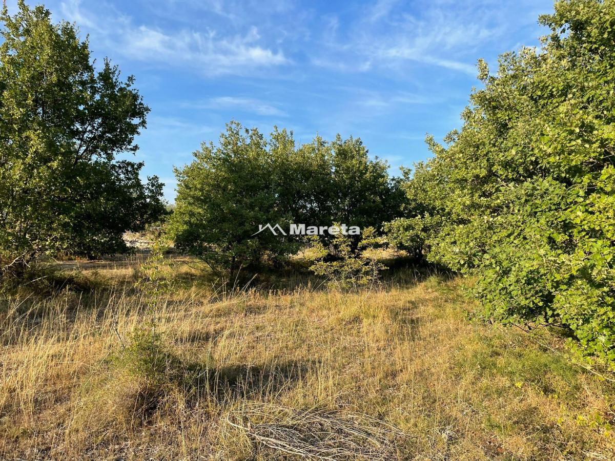 MURVICA - građ. zemljište 800 m2